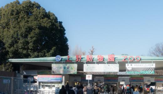 はじめての動物園【その2】 — 上野動物園へ行ってきた!